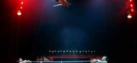 UNIVERSOUL CIRCUS RETURNS TO SOUTH FLORIDA TO CELEBRATE ITS 25TH ANNIVERSARY OF FUN UNDER THE BIG TOP